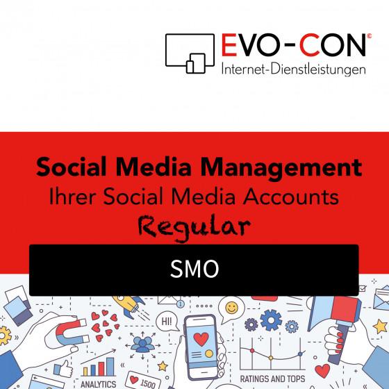 Social Media Management - REGULAR