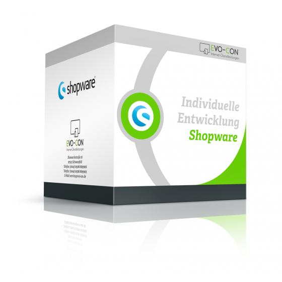 Individuelle Entwicklung - Shopware