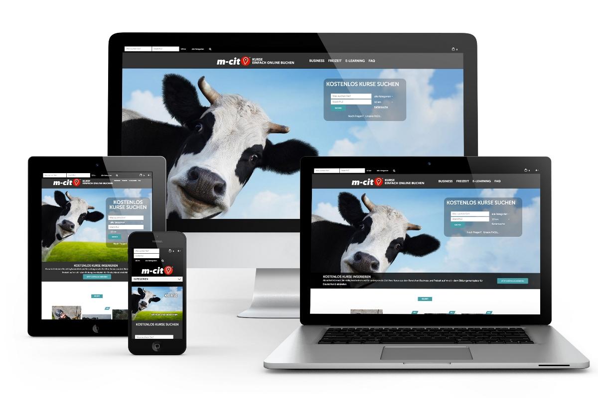 Programmierung des Online-Shops und SEO