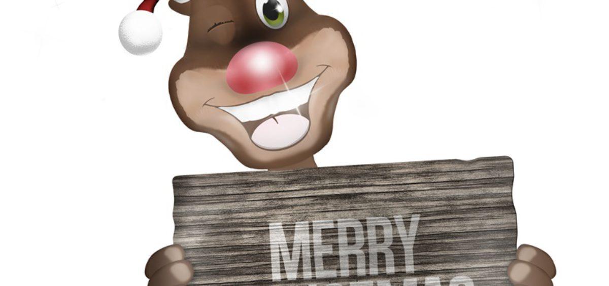Tipps für ein erfolgreiches Online-Weihnachtsgeschäft