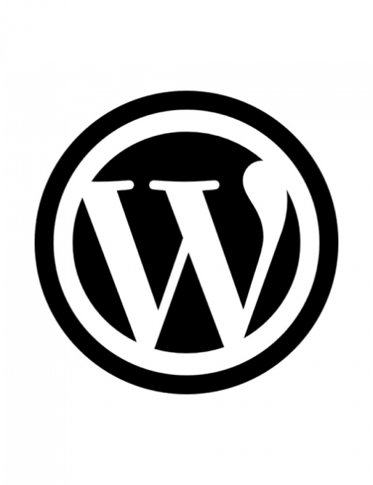 Wordpress Systemwartung CMS